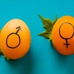 Giáo dục giới tính theo độ tuổi 1 – 18.